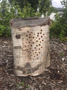 Bee hotel log